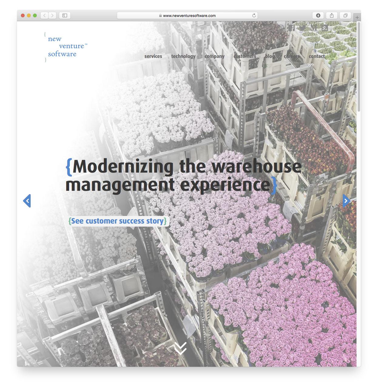 New Venture website preview 1